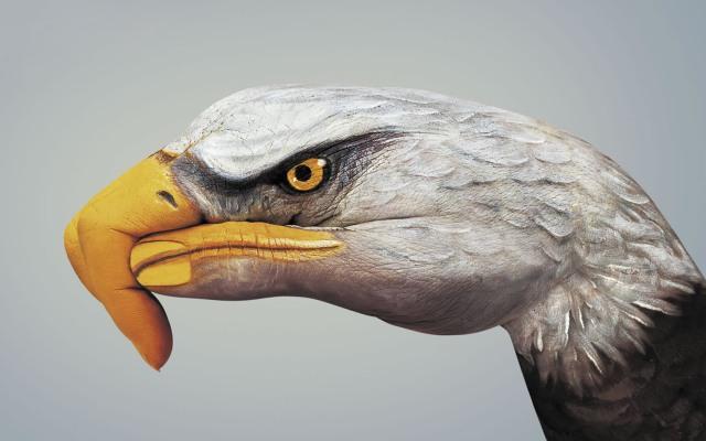 Bodypaint_Eagle_Widescreen